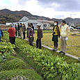 収穫祭20111217_1
